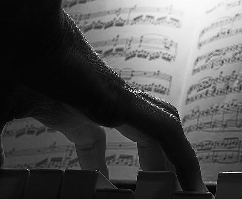 delord-poesia-italiana-piano_mano
