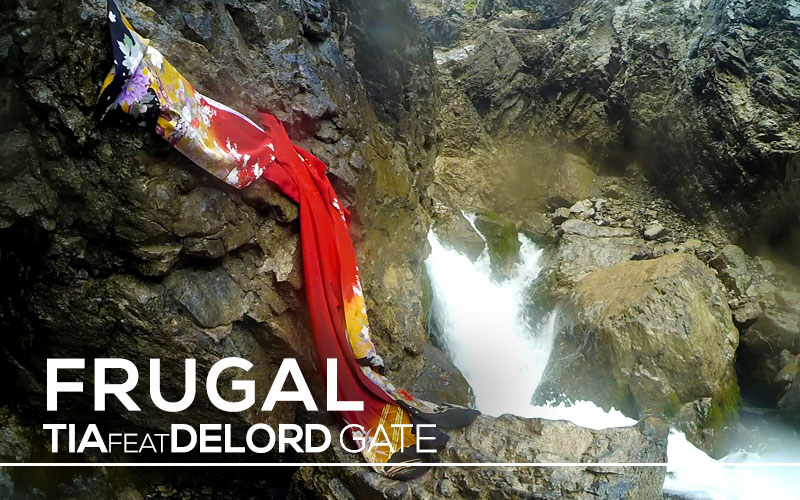 DeLord Gate | FRUGAL ENGLISH